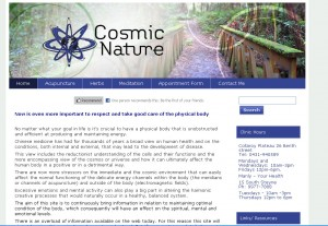 health acupuncture meditation website design