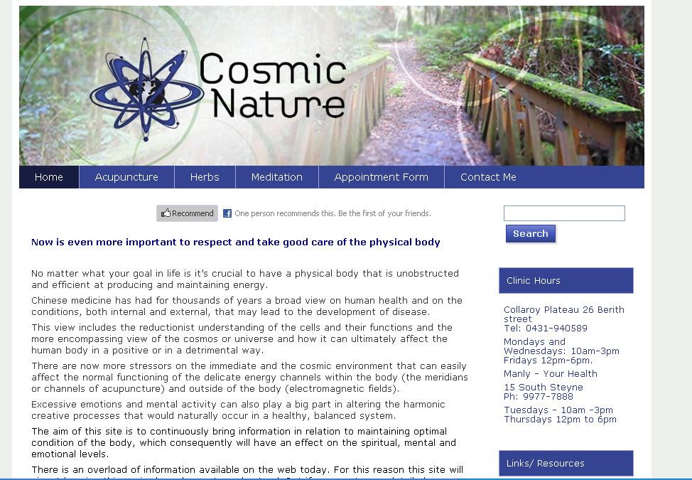 health acupuncture meditation website design